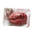 Halloween Decoration Bloody Brain Gehirn (red)