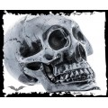 Queen of Darkness Big skull for decoration in silver color